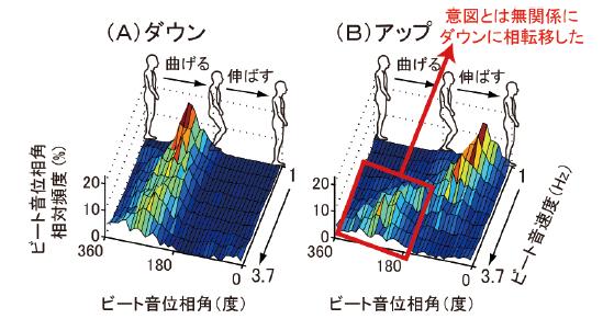 図1 非ダンサーのアップからダウンへの相転移現象。膝の運動の1サイクルを360度(0-180度:伸ばす期間,180-360度:曲げる期間)で表現し,360度中のどの時刻(位相角)でビート音が鳴ったかを定量化し,ヒストグラムにした図。([3]よりElsevier社の許可を得て引用改変)。