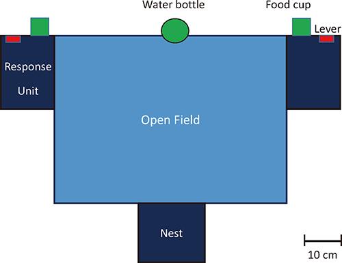 図1 封鎖経済下での選択行動実験で用いた実験箱