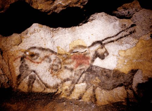 ラスコー洞窟の「牡ウシの広間」左壁に描か れた《ユニコーン》と呼ばれる混成動物像(体はサ イ,体の目玉模様はネコ科動物,頸上部はクマ,ト ナカイあるいはネコ科動物,短い尻尾はシカ科,真っ 直ぐに伸びる長い角が特徴的である)。