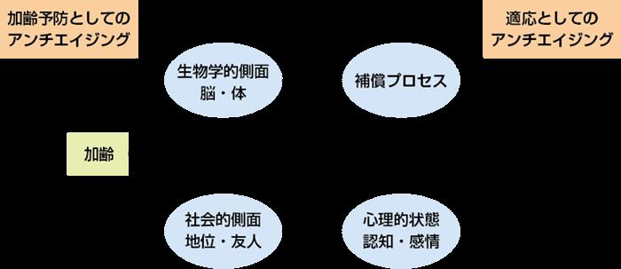 図1 心のエイジングとアンチエイジングに関する模式図(権藤ら, 2017)