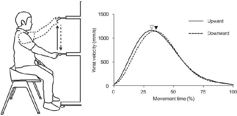 図1 運動課題(左)と手首の速度曲線(右)