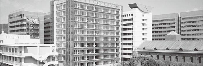 写真1 徳島市のシンボル眉山の東南に位置する徳島文理大学キャンパス。中央右の白い建物が心理学科が入っている棟。