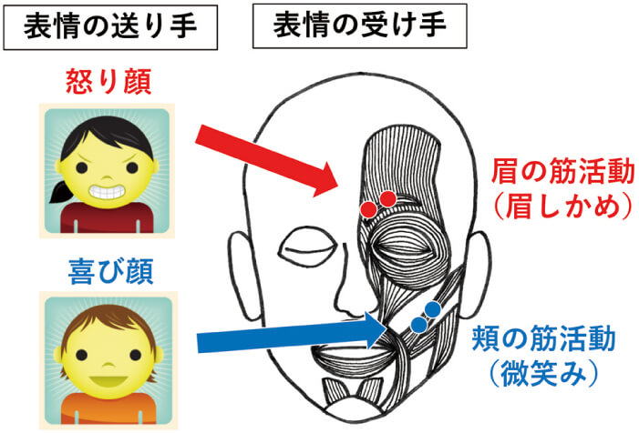 図1 表情同調の概要