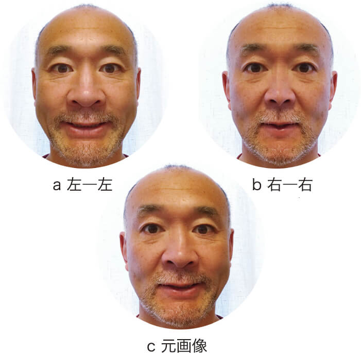 図2 キメラ構成顔