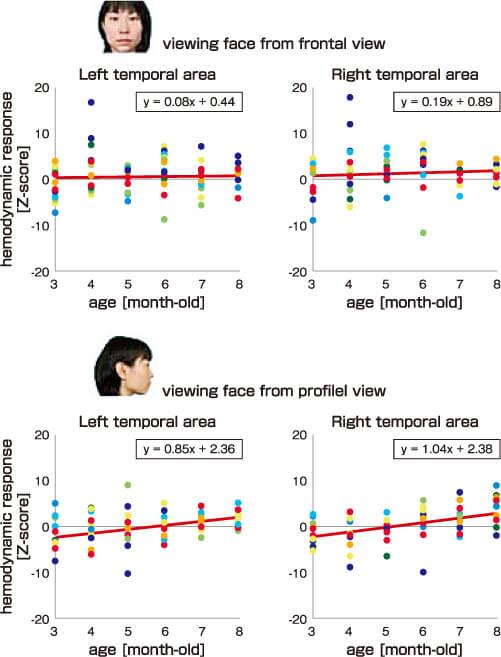 図3 横顔と正面顔を見た時の左右両側頭の活動の発達過程(Ichikawa, Nakato et al., 2019より)
