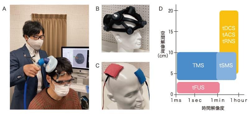 A:経頭蓋磁気刺激(TMS)の様子。実験者(著者)と参加者(谷恵介助教)は新型コロナウイルス感染症(COVID–19)対策としてマスクを着用。B:経頭蓋静磁場刺激(tSMS)。 C:経頭蓋電気刺激(tDCS, tACS, tRNS)。D:経頭蓋脳刺激の空間解像度と時間解像度